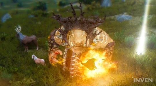 Black Desert Online: Farming Memory Fragments with Boss