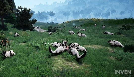 Black Desert Online: Farming EXP and Silver in Kamasylvia: A Guide