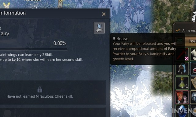 Black Desert Online A New Companion With Many Useful Buffs The