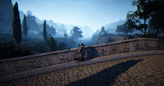 Black Desert Online: BDO KR Patch Notes May 24th: CC Removed